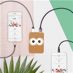 Power banks 5000 mAh - Hibou